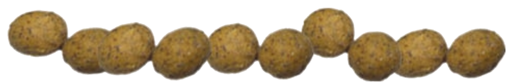 boilies_footer
